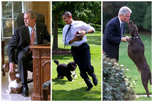 組圖:特朗普不養寵物 或破白宮百年傳統