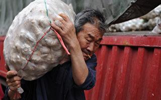 随着坏天气和投机买家的兴趣刺激市场,在过去一年,大蒜价格几乎翻番,达到历史最高水平。( AFP/AFP/Getty Images)