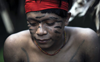 盗采巴西雨林金矿 六人遭森林土著射杀