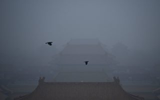 Two crows fly over the Forbidden City in Beijing on October 21, 2016. / AFP / WANG ZHAO        (Photo credit should read WANG ZHAO/AFP/Getty Images)