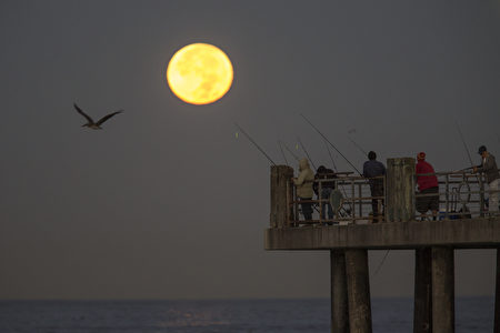 REDONDO BEACH, CA - NOVEMBER 14: The moon sets behind people fishing on a pier during its closest orbit to the Earth since 1948 on November 14, 2016 in Redondo Beach, California. The so-called supermoon appears up to 14 percent bigger and 30 percent brighter as it comes about 22,000 miles closer to the Earth than average, though to the casual observer, the increase appears slight. (Photo by David McNew/Getty Images)