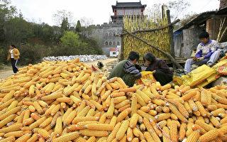 年轻人逃离 中国东北面临人口危机