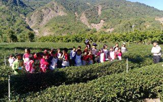 傳承在地文化 新發國小陶冶茶道