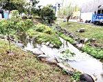 台中市北屯区新都生态公园为台中首座以生态工法设计的公园,号称六星级,假日游客上万。(台中市政府提供)