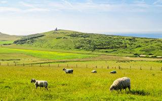 (fotolia)background. Near Eastbourne, East Sussex, England