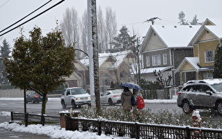 圖:12月5日,大溫地區今冬第一場雪。(唐風/大紀元)