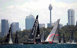 2016年12月26日,第72届悉尼-霍巴特帆船赛开锣。该赛事已成为澳洲的一项圣诞节传统。( Brendon Thorne/Getty Images)