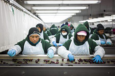 渥京称会继续密切关注从墨西哥来的移民,也有可能恢复签证要求。(加通社)