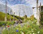 露天花园(图片由Eden Project提供)。