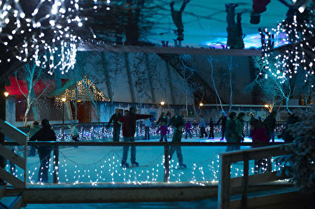 Eden Project的冬季溜冰場(圖片由Eden Project提供)。