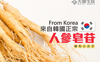 比红参更好吸收 韩国正宗人参皂苷|大医生技