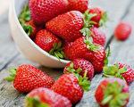 【你好韩国】春天 共赴草莓的飨宴
