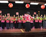 1月28日周六、大年初一晚,加州圣地亚哥台湾同乡会在台湾中心举办2017新春联欢暨新旧理事交接晚会,逾400人参加,当属历年最多,可谓盛况空前。图为台湾中心长辈组在陈松美的指挥下表演经典合唱。(杨婕/大纪元)