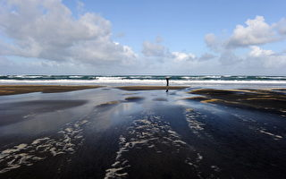 全球25個最佳海灘 奧克蘭Karekare名列第二