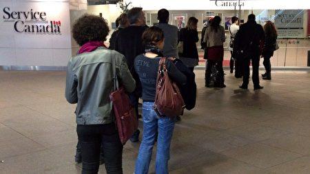 去年11月,亚省近10万人领取失业金,接近历史最高水平。(加通社)