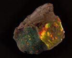 世界罕見的珍貴寶石:重達近1公斤、價值90萬澳元的「澳大利亞之火」。(南澳博物館提供)