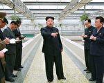 投诚韩国的前朝鲜外交官表示,朝鲜民众不满情绪日益升高,金正恩政权已进入倒计时。(AFP)