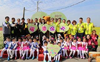 2017太保市花海节  1月22日即将热闹登场