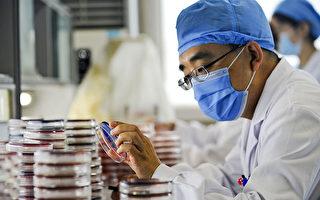 滥用抗生素致超级细菌渗透中国大陆