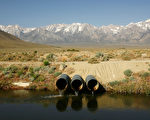 據加州水資源部數據,週二(10日)內華達山的積雪達到歷史平均值的135%。內華達山的積雪和加州農業灌溉息息相關。(GettyImages) (Photo by David McNew/Getty Images)
