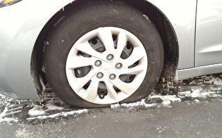 疑中共破壞 神韻工作人員車胎被毀 警方調查