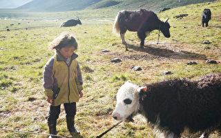 【食‧文化】藏人的生活艺术。(新唐人提供)