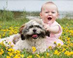 可爱的宝宝和狗狗。(shutterstock)