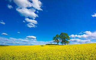 这世上总会有如白云般变来变去的东西,同时也一定有同蓝天一样沉寂却亘古不变的事物。(fotolia)