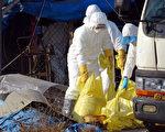 嘉義縣朴子市一處烏骨雞場驗出禽流感病毒H5N6陽性反應,防疫人員於15日下午已完成撲殺作業,並全面對周邊家畜飼養場消毒,防範疫情擴散。(民眾提供)