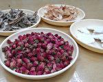 台南市1名女子因生理期下腹悶脹,自行喝黑糖薑茶希望緩解,卻沒有效果;經中醫師診斷發現體質並不適合,改以藥方配合玫瑰花飲加以改善。(奇美醫學中心提供)