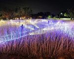 台南市2017月津港燈節,展期進入尾聲,市府呼籲民眾可以把握228連續假期的最後機會,安排一趟台南輕旅行,欣賞美麗的藝術燈景。(台南市觀旅局提供)