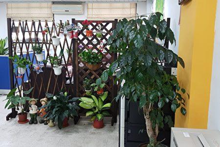辦公室入口處,一進門就可見到綠意盎然,彩色繽紛的畫面,令人心曠神怡。(李芳如/大紀元)