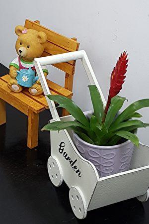 辦公室內一個小角落放上一盆可愛的小熊及盆栽也別有一番特殊景致,令人欣喜。(李芳如/大紀元)