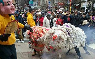 中国黄历大年初二(1月29日),费城华埠发展会在中国城举行了舞狮庆中国新年游行。费城太阳舞狮队的表演深受民众喜爱。(陈晓/大纪元)
