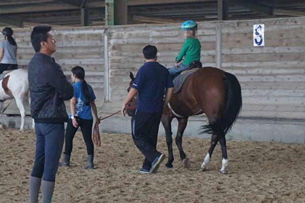 馬術治療人力成本高,一位被治療者必須在治療師(馬側)、牽馬的領馬員(馬前),以及場內教練(左前)的協助下完成。(李怡欣/大紀元)
