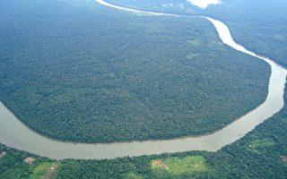 部分亚马逊雨林的鸟瞰图。(维基百科公有领域)