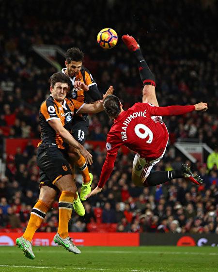 曼联在主场被保级球队赫尔城逼平。图为曼联前锋伊布(9号)倒勾射门瞬间。 (Clive Mason/Getty Images)