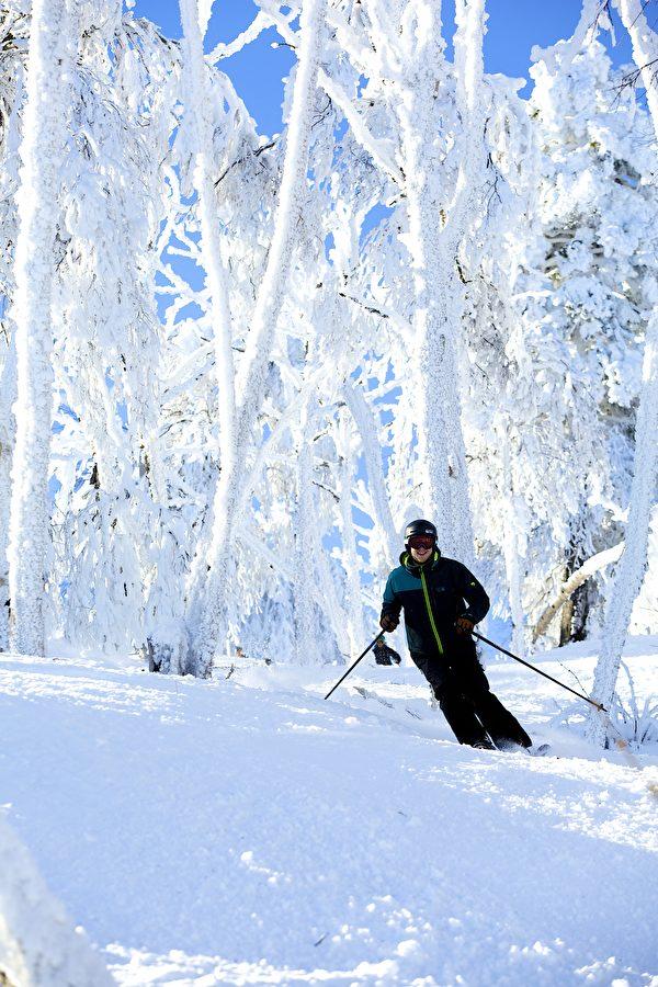 在银白的树林中穿行滑雪,享受拥抱自然的乐趣。(Okemo滑雪渡假村提供)
