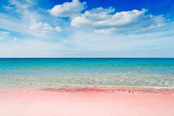 位于巴哈马的哈勃岛东侧的粉色沙滩。(shutterstock)