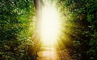 瞥見未知世界:瀕死體驗的後效應與心理支持