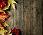 秋天的枫叶(fotolia)