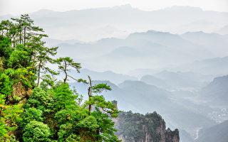 美国加州大学柏克莱分校的一项研究发现,观赏大自然影片可使人比较快乐。图为湖南省张家界国家森林公园。(Fotolia)