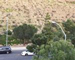 加州圣地亚哥市长今日公布了将在3200个路灯上安装智能传感器以收集交通、环保等各种的数据的计划,使圣地亚哥成为走向城市智能化的先锋城市。图为圣地亚哥市一处街道两边的路灯。(杨婕/大纪元)