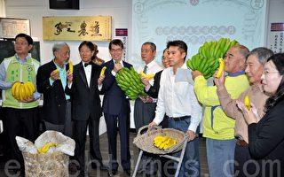 """""""香蕉大乐透:台湾香蕉产业黄金岁月与金碗案的故事""""特展开展,贵宾云集共同见证香蕉光荣历史。(李晴玳/大纪元)"""
