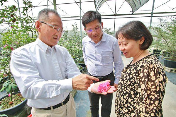 市長林佳龍(中)與夫人廖婉如(右)19日前往辜嚴倬雲植物保種中心參訪。(台中市政府提供)