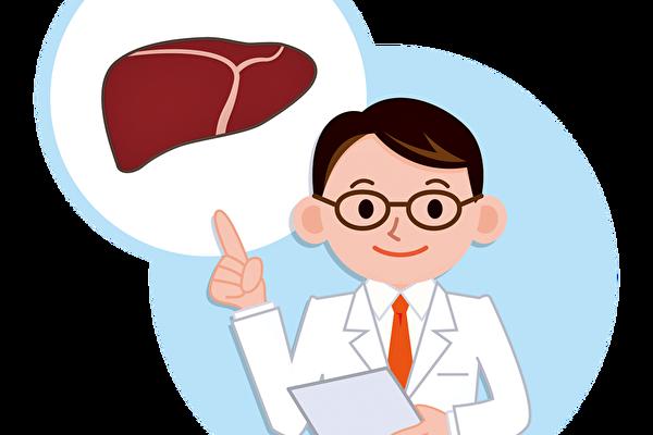 """""""肝脏""""是身体重要的解毒器官。(Fotolia)"""