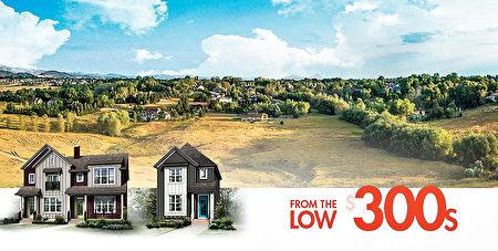 Homes by Avi 提供的经济实惠的独立屋和双拼屋(Homes by Avi 提供)。