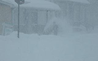 罕见三月暴风雪 纽约客享受浪漫雪景