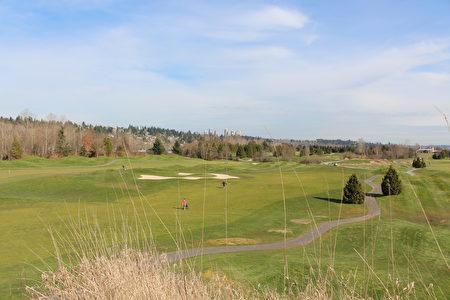 风景优美的高尔夫球场不仅让人享受优雅运动,也是举办婚礼和电影拍摄的佳地。(图片由Golf Burnaby提供)