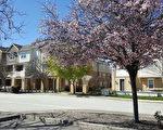 摩根希尔(Morgan Hill)的住宅环境优美、街道新颖。(Morgan Hill地产经纪Dianna Yang-Dininno提供)